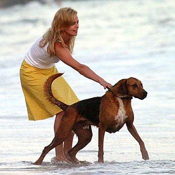 chien-charlize-theron